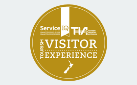 Visitor Experience icon